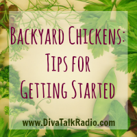 Backyard Chickens: Tips for Getting Started