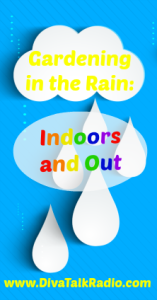 Gardening in the Rain: Indoors and Out