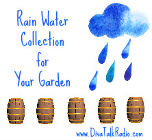 Rain Water Collection for Your Garden